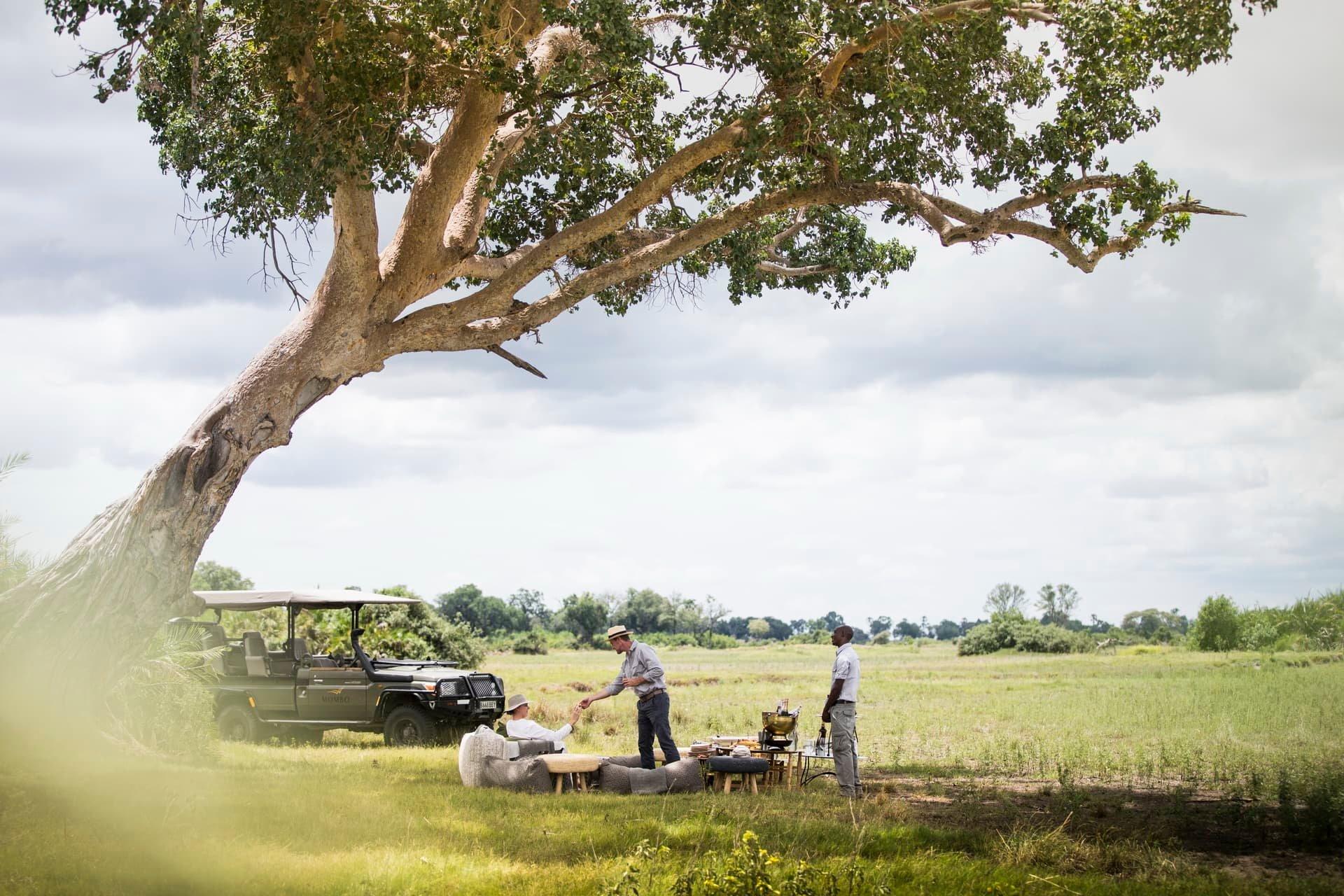 Mombo Camp - Botswana - The Indiana Travel Experiences13
