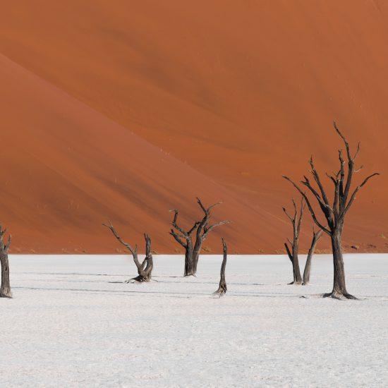 Namibia - The Indiana Travel