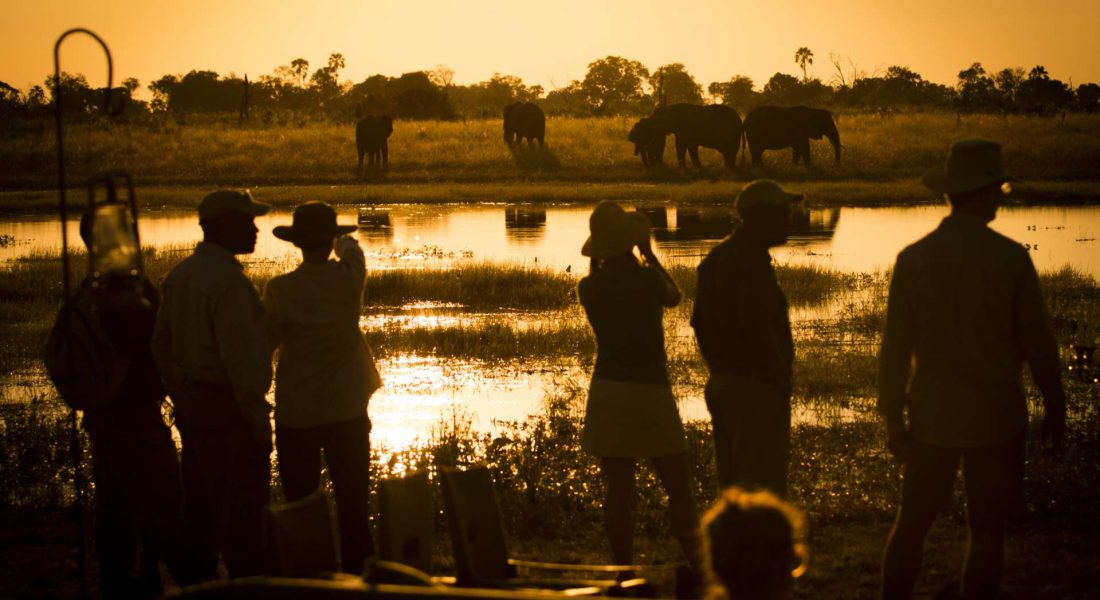 ABU CAMP 3 - BOTSWANA - THE INDIANA TRAVEL