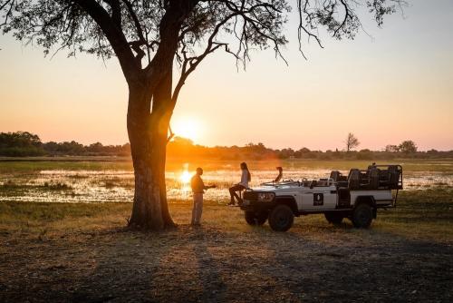 Sanctuary Chief's Camp Safari- Botswana - The Indiana Travel Experiences
