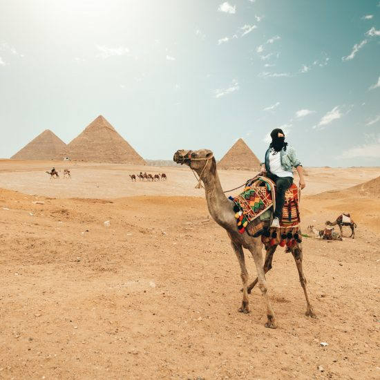 EGIPTO SINGLES SOLO - THE INDIANA TRAVEL